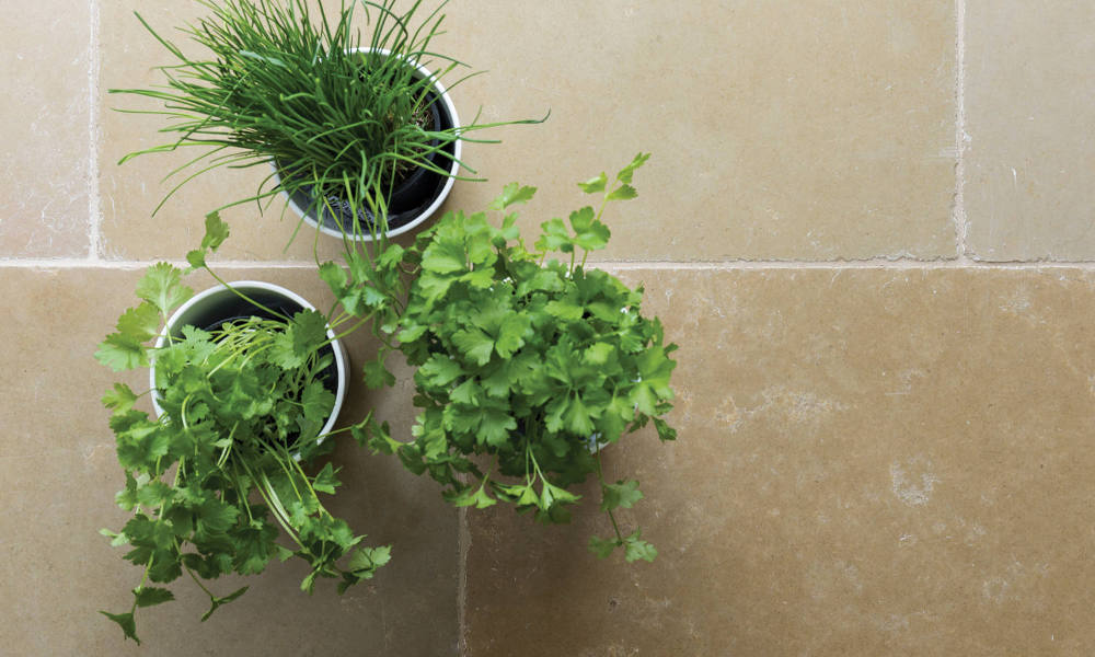 Natural Stone Tiles With Three Plant Pots Containing Green Herbs